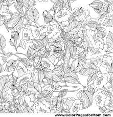 179 best bianco nero images on pinterest coloring books