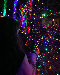 Zoo Lights Columbus Zoo by 10 Magical Ohio Holiday Light Shows U2014 Ohio Explored