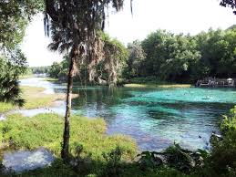 Florida Rivers images A trip down rainbow river in florida is all you need for summer jpg