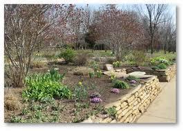 missouri native plant society the springfield botanical gardens news march 24 2017 sunday