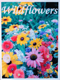 wildflower seed packets seed packet