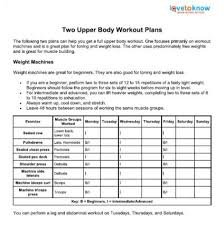 workout plan for beginners at home upper body workout plans lovetoknow