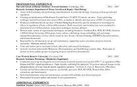 Sample Resume 85 Free Sample by Resume Artist Cv With 85 Wonderful Professional Looking Resume
