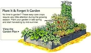 Best Vegetable Garden Layout Free Vegetable Garden Plans Vegetable Garden Layout