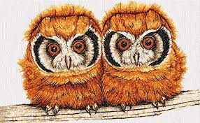 two owls photo stitch free embroidery design free
