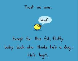 No Trust Meme - trust no one jpg