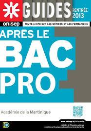 Cci Martinique Ccim Fiches Pratiques Pour Vos Formalités Calaméo Après Le Bac Pro 2013