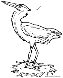 coloring pages com free printable coloring pages of birds chicken 01