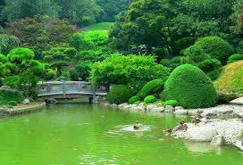 Botanic Garden New York Botanical Garden Botanical Gardens Pinterest Gardens