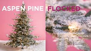 christmas tree market u201d grandin road youtube