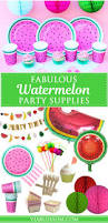 Summer Party Decorations Best 25 Watermelon Party Decorations Ideas On Pinterest