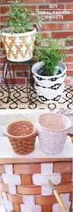 Steven Alan Home by Best 20 Painted Flower Pots Ideas On Pinterest Painting Clay