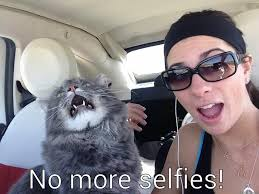 Selfie Meme Funny - funny selfies memes 15 background funnypicture org