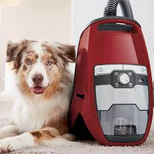 australian shepherd ipod 5 case miele blizzard cat u0026 dog canister vacuum cx1 autumn red