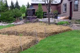 Best Type Of Mulch For Vegetable Garden - sheet mulching follow this advice for the best mulch