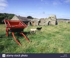box cart dh kirbuster farm museum birsay orkney farm box cart and farm