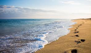 carolina u0026 kure beach nc vacation rental oceanfront houses
