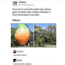 Straya Memes - straya meme by mr bigg memedroid