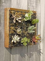 living wall kits u0026 garden wall planters