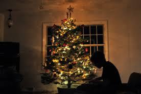 plum tree place o christmas tree