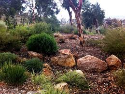 Garden Rocks Perth Landscaping With Local Plants About Gardens Garden