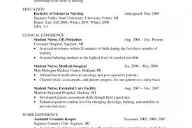 Resume Template Business 2005 Earthquake In Pakistan Essay No Year Round Essay Ray