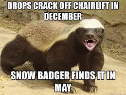 Honey Badger Meme Generator - drops crack off chairlift in december snow badger finds it in may