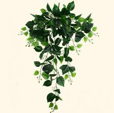 Hanging Plant Compare Prices On Hanging Plant Leafs Online Shopping Buy Low