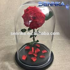 rose in glass single giant immortal rose in glass dome preserved flowers