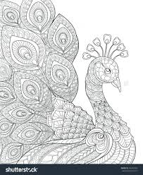peacock coloring black white hand drawn doodle