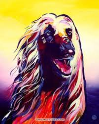 afghan hound jackets digital art for all you robots animal art pinterest digital