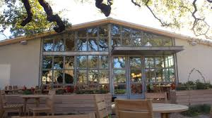 28 treehouse grill austin south austin foodie first look at tour sunny salad haven vinaigrette opening today eater austin