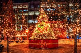 Christmas Trees With Lights Beautiful Decoration Lighted Christmas Trees Colorful Tree