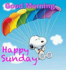 imagenes de snoopy deseando feliz domingo pin de theresa wolmart en good morning good afternoon good night