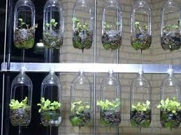 Garden Setup Ideas Herb Garden Setup Herb Spiral In Home Garden Best Herb Garden