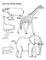 wild african animal coloring pages animal coloring pages of