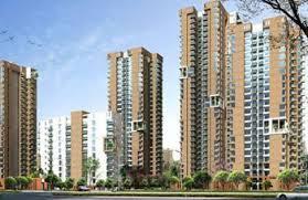 Pioneer Park Gurgaon Floor Plan Pioneer Park In Sector 61 Gurgaon Buy Sale Apartment Online