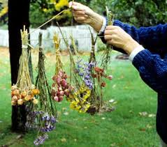 Preserve Flowers How To Create Dried Flowers Preserve Flowers Bouquets And