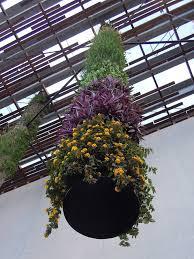 Vertical Gardens Miami - pamm museum one growing column miami dec 2013 jardines