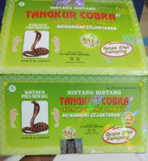 tangkur cobra jual tangkur kobra distributor jamu tangkur