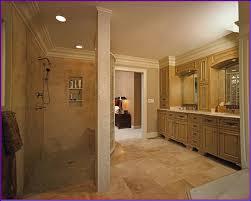 Walk In Shower Without Door Shower Shocking How To Build Walk In Shower Without Door Photo