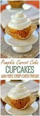 best 25 carrot cupcake recipe ideas on pinterest carrot cake