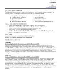 Resume Skills Summary Examples Ultimate Resume Writing Summary Of Skills On Charming Resume