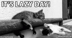 Lazy Day Meme - happy lazy day gif lazyday discover share gifs