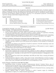 Best Program Manager Resume by Example Project Manager Resume 21 Technical Project Manager Resume