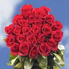 bulk roses buy cheap lisianthus online lisianthus delivery wholesale flowers