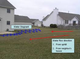 Drainage Issues In Backyard Lawn Drainage Drainage Swales