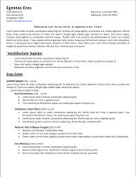 Easy Resume Samples by Resume Easy Resume Example
