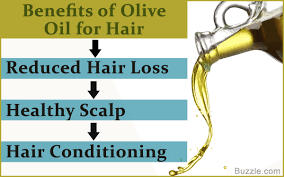 Tea Tree Oil Hair Loss Does Warm Olive Oil Promote Hair Growth New Hair Style Collections
