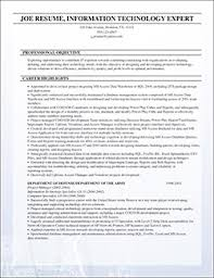 Individual Resume Resume Samples And Resume Examples